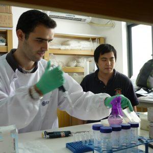 Biochemistry And Laboratory Experience