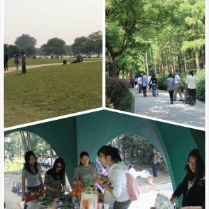 Shanghai Outings: Gongqing Forest Park